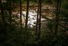 Elkins, WV (jackw2010) Tags: elkins express jack new tygart virginia wade west princeton westvirginia unitedstates