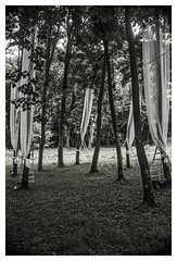 ... para  un cortejo de espritus del bosque ... (Lanpernas 2.0) Tags: bosque parque gladysenea sueodeunanochedesanjuan shakespeare fantasa teatro ensoacines literatura 2016 escenografa atrezzo