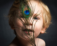 Looking Through (kate.millerwilson) Tags: peacock boy child feather painterly chiaroscuro homestudio offcameraflash alienbees