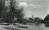 St. James's Park (Leonard Bentley) Tags: stjamesspark parliamentstreet judgesofhastings ww1 indiaoffice foreignoffice pelicans courtofstjames russianambassador kingcharlesii 1664 2013 1912 royalpark praguezoo horseguardsparade wingclipping southend cannonrow pigeon duck fish london uk