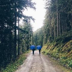 a little #rainy #day #walk in #ramsau. there's no such thing as #bad #weather. #rainyday #blue #umbrellas #woods #hike #wanderlust #rain #twins #not #twopeople #forest #road #vscocam #igersgraz (goernsnroses) Tags: ifttt instagram little rainy day walk ramsau theres no such thing bad weather rainyday blue umbrellas woods hike wanderlust rain twins not twopeople forest road vscocam igersgraz