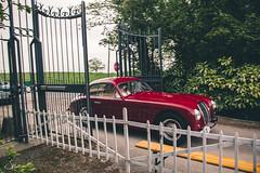 Maserati A6 1500 GT Berlinetta (Stijn Sioen) Tags: france classic car french picnic tour classics oldtimer frankrijk gt oldtimers 1500 classiccars maserati cassel a6 balade berlinetta 2015 1mei lepremiermai