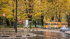 Autumn in Turin (Stephane Rossignol) Tags: autumn italy automne torino turin italie
