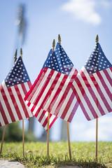 American Flags vertical (clemsonnews) Tags: flag rip americanflag memorialstadium memorialday memorialpark americanlegion halfstaff honorguard 21gunsalute clemsonuniversity honorthefallen monumenttothefallen freedomisntfree clemsoncorps memorialday2015