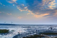 IMG_5189 (Yoti‧生活) Tags: hsinchu taiwan 台灣 新竹 2014 landscapephotography canon1855mm 風景攝影 十七公里海岸線 canoneos550d 香山濕地自然公園