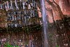 20150523 Emerald Pools (Zion)-8 (Tony Castle) Tags: park nature forest utah us waterfall unitedstates hurricane national pools zion znp emeral