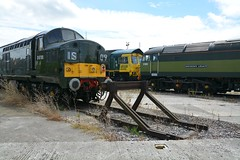 """BR Green Class 37/3, D6700, Two-Tone Green Class 47/8, 47830 """"Beeching's Legacy"""", & Freightliner Green Class 66/5, 66596 (37190 """"Dalzell"""") Tags: br britishrailways green celebrityrepaint twotone freightliner greenyellow ee englishelectric vulcanfoundry type3 growler tractor class37 class373 brush sulzer type4 duff spoon class47 class478 gm generalmotors fred class66 class665 d6700 37350 37119 47830 d1645 beechingslegacy 47649 47061 66596 nrm nationalrailwaymuseum midlandroad depot leeds"""
