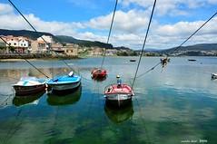 Marea baja (Enllasez - Enric LLa) Tags: paisaje paissatge galicia barcas ria 2016 puerto port mar nwn
