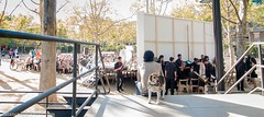 L'orquesta es prepara (satance) Tags: barcelona de la musical pau sant parc districte pegaso andreu casals homenatge associaci himne lalegria andreuenca