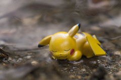 _DSC4029 (Simply Angle) Tags: sony sonyphotographing sonyphotography sonya7ii a7ii ilce7m2 pokemon pikachu pokmon water dirt sand closeup toy portrait canonfd100mmf4macro nature