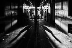 Sunset light// Luz del ocaso (Mireia B. L.) Tags: reflection blackandwhite blancoynegro reflejo sunsetlight luzdelocaso symmetry simetra shadows sombras