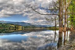 Beauty (Rickydavid) Tags: trees italy lake reflection water alberi clouds lago mirror italia nuvole acqua specchio riflesso ciociaria ferentino canterno lagodicanterno