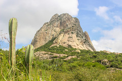 Mexico In All It's Beauty (Erick Flores Diaz) Tags: cactus sky plants green nature grass rock clouds landscape monolith