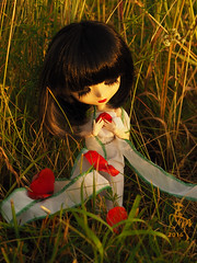 Falling Flowers (Malina (LaelP)) Tags: sunset red summer sun white black love sunrise outdoors petals doll poem sad dress melissa wig romantic groove pullip sorrow obitsu rewigged