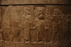 883Persepolist_Relief (queulat00) Tags: assyria persia babylonian asiria babilonia irn iran britishmuseum museo museobritnico