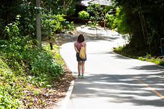 Mountain Stroll (Jamie Langford) Tags: thailand chiangmai mountains sunlight shadows