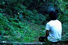 (.Luz.) Tags: verde bosque tranquilidad pensar naturaleza