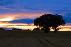 Countryside Sunset (James.Green2001) Tags: sunset worcestershire trees photoshop field blue sky lumix fz fz72 jpeg clouds worcester leading lines landscape