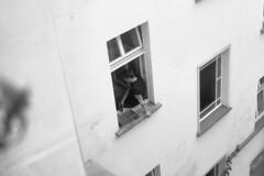 window sill [analog] (__J) Tags: canona1 a1 canon canonfd 50mm canonfd50mm18 berlin film analog scanned scan analogue blackandwhite schwarzweis sw bw prenzlauerberg window fenster fensterbank windowsill innenhof fromabove vonoben chm400 chmfilm