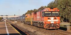 1451s Greenfields 06/08/2016 (Dom Quartuccio) Tags: fq04 fq02 freightlink gw gwa 1451s train railway graintrain grain railpage bowmans greenfields dry creek north artc adelaide south australia