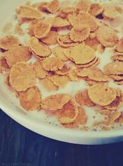 Cereals (Allison Belen Photography) Tags: cereals breakfast milk