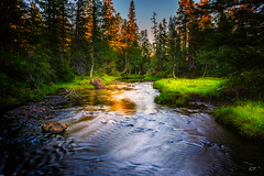 The secret place (Troutfisher266) Tags: norway creek nikon nature water summer longexposure landscape light nordtrndelag no