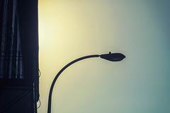 Retro Light (pillarsoflight) Tags: portland pdx oregon city pnw beauty apsc crop sensor nikon d3300 50mm 18 ais filmlens classicaperture prime lightroom adobe shotonsandisk sandisk apple imac pacificnorthwest nik blue yellow gradient sun glare light lamp streetlight building side sky upward frame silhouettes bulb windows