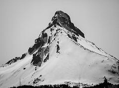 Standing Tall (sethalanphoto) Tags: cascades mountain mt mount jefferson peak snow bw