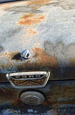 (shadowplay) Tags: ford hoodornament rust corrosion oxidation abandoned