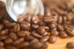 Organic Sumatra Coffee Beans (robertxcadena) Tags: food brown coffee beans warm soft stock coffeebeans