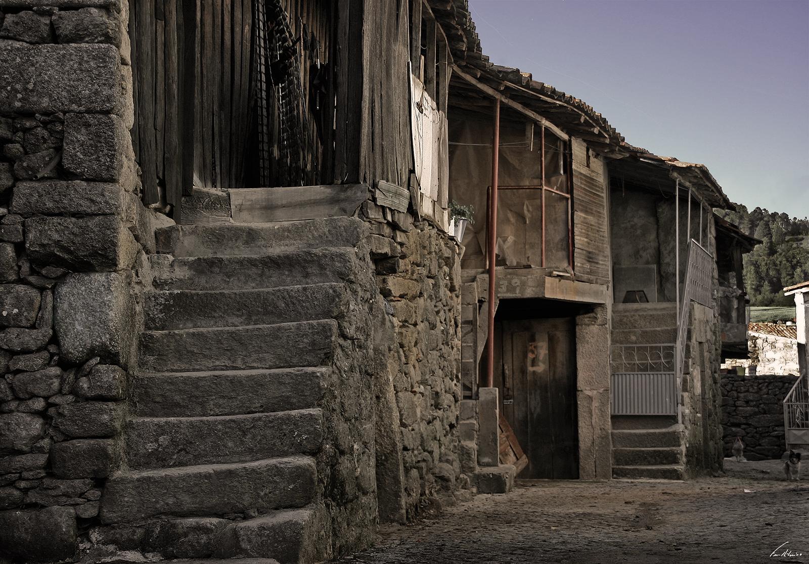 1600-cimo-vila (79)