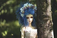 faery (Lokifer Sugar) Tags: doll faery bjd natalie yashica yashinon sqlab oasisdoll
