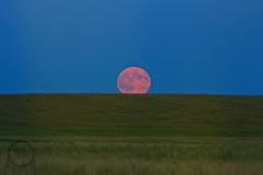 Red Hued Moon (breann.fischer) Tags: nd2016contest luna moon fullmoon redmoon moonrising landscape nature northdakota greatplains prairiemoon