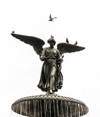 Birds and Angel, Central Park, NYC DSC02334 (nianci pan) Tags: nyc newyork newyorkcity manhattan nature cityscape city urban park centralpark spring sony sonyalphadslr sonyphotographing nianci pan angel birds