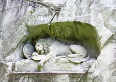 Dying Lion_Lucerne (slsreeju) Tags: monument switzerland memorial lion ac dying lucerne thorvaldsen bertel luzernswitzerland fidei helvetiorum virtuti
