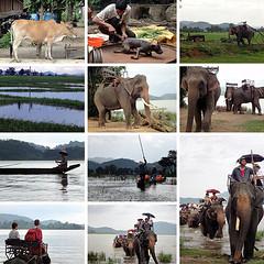 (atrisagasht) Tags:   india travel tour