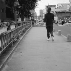 160619_ZenzaBronicaS2_010 (Matsui Hiroyuki) Tags: fujifilmneopan100acros zenzabronicas2 nikonnikkorp75mmf28 epsongtx8203200dpi