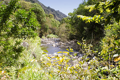 Lao Valley (rschnaible) Tags: lao valley maui hawaii pacific tropics tropical sightseeing outdoors tour hike landscape rugged mountains water stream jungle