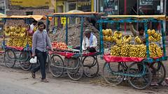 Fruit Carts, Uttar Pradesh, India (bfryxell) Tags: fruitstand india uttarpradesh