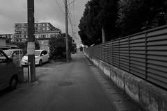 Leica Q (Typ 116) : August 11, 2016 (takuhitofujita) Tags: eyefi eyeficloud 人々 flickr leicaqtyp116