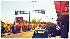 Protesta Coldiretti [3] (triziofrancesco) Tags: bari lungomare protesta corteo protest procession bandiere flags