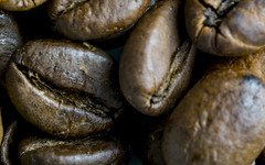 roasted coffee beans - 6051 (stefanfricke) Tags: kaffee coffee brown roasted bean bohne braun macro sony ilce6000 a6000 tamron180mm135macro