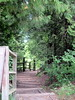 Down to the Lake (BunnyHugger) Tags: letterboxing michigan northport petersonpark