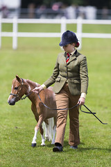 Kent_County_Show_2014_Highlights_068