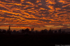 IMG_1770 (cokecavieres) Tags: cielo clouds sky sunset winter invierno landscape atardecer paisaje campo nubes