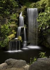 Water of Life (Jeff_Joseph) Tags: california longexposure plants blur green water losangeles nikon rocks outdoor arboretum falls motionblur waterfalls d800