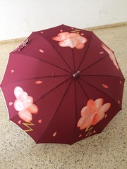 paraguas (fundacioESPURNA) Tags: paraguas botigaespurna
