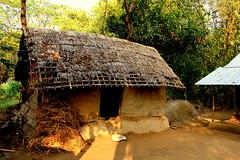 ~a village house almost ruin conditions~ (~~ASIF~~) Tags: canon60d outdoor nature village house ruin conditions sunlight shodow framebangladesh bangladesh