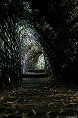 Tunel (rockdrigomunoz) Tags: tunel escalera naturaleza viajes