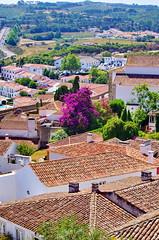 85 - Obidos toits et jardins (paspog) Tags: obidos portugal toits roofs tuiles tiles decken villagemdival medievalvillage